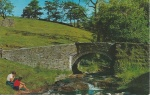 Goyt's Bridge - Salmon